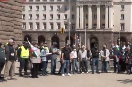 50 човека уважиха протеста на Стъки пред Президентството
